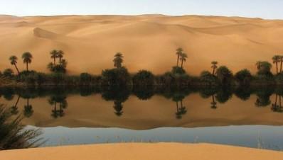 Ливия. Оазис